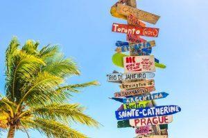 Was will ich wirklich - Wegweiser mit tropischer Palme