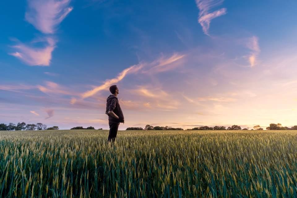 Vision Board erstellen - Mann auf freiem Feld unter blauem Himmel