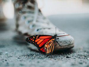 Lebensfreude wiederfinden - Bunter Schmetterling auf zerfleddertem Schuh